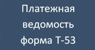 t 53 mini