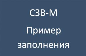 сзвм-миниатюра